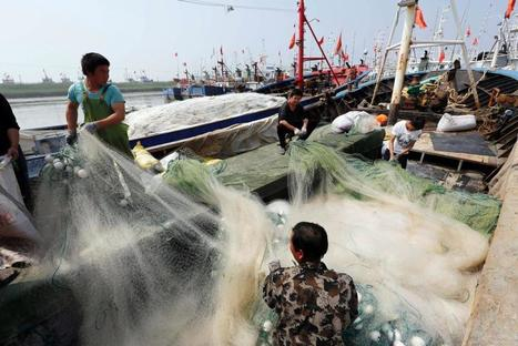 Saving the Seas From China's Bloated Fishing Industry | Aquaculture Directory | Scoop.it