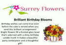 Surrey Flowers Shop in Canada : Free Download & Streaming : Internet Archive   surrey flowers   Scoop.it