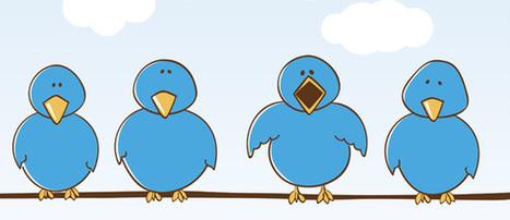 10 consigli per fare personal branding su Twitter   e-business   Scoop.it