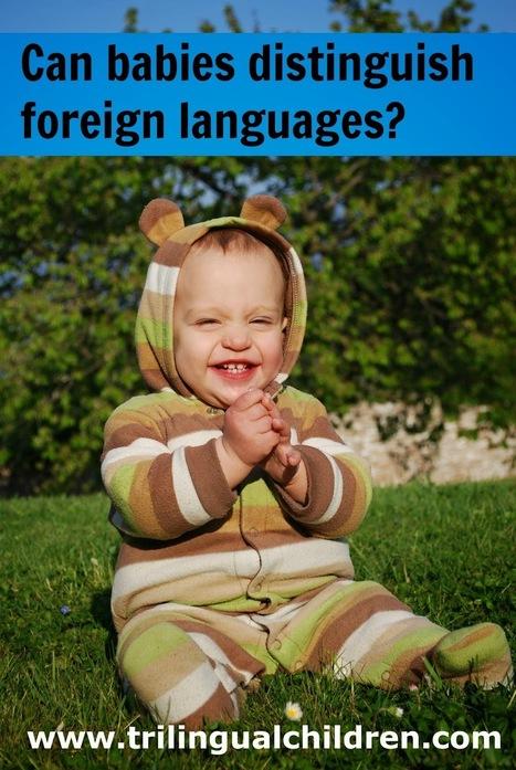 Raising a Trilingual Child: Can babies distinguish foreign languages?   Raising Bilingual  Multilingual Child   Scoop.it