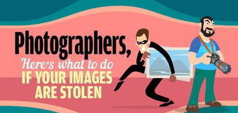 ¿Qué hago si roban mis fotos online o las copian ilegalmente? [Infografía] | Recull diari | Scoop.it