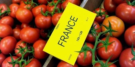 Quel est le juste prix d'un kilo de tomates ? | Végétarisme, alternative alimentaire | Scoop.it