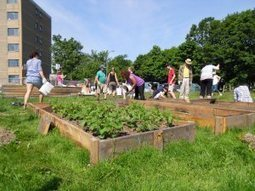 10 Steps to Starting a Community Garden | ECONOMIES LOCALES VIVANTES | Scoop.it