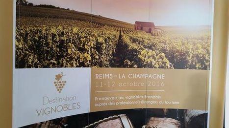 L'oenotourisme en Champagne : comment faire pour attirer plus de touristes ? | Le tourisme pour les pros | Scoop.it