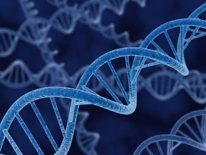 From Triggers to Targets: Less-Explored Regions of DNA Reveal Uninvestigated Cancer Triggers | Laboratory Science | Scoop.it