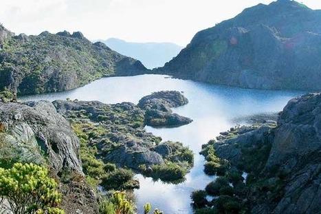 Paramo santurban   lo mejores paisajes del mundo   Scoop.it