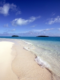 Pacific Resort Aitutaki...Secluded Luxury | Discover hospitality management | Scoop.it