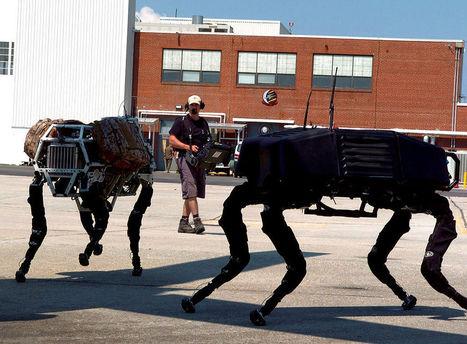 Better Vision Control Architecture On Robotic 'Walkers' | CrazyEngineers | Futuristic Intelligent Robotics | Scoop.it