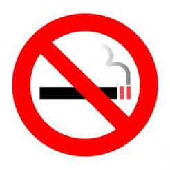 Sigaranın Zararları   Havlayan Kirpi   Scoop.it