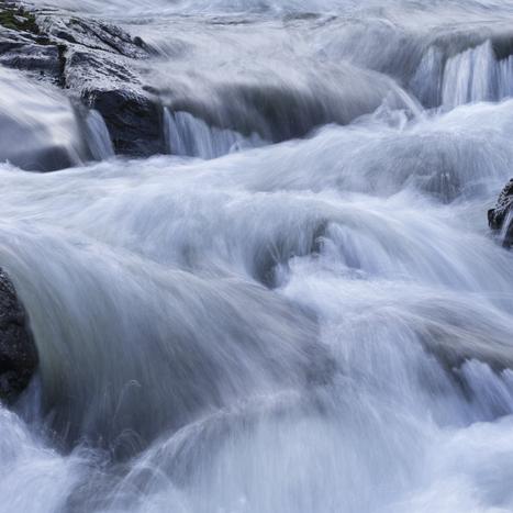 Water Fight | My Photo | Scoop.it