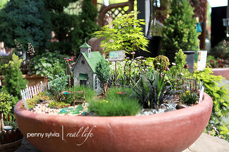 Mini Fairy Gardens at Bushnell Nursery with Arlene Schott | Annie Haven | Haven Brand | Scoop.it