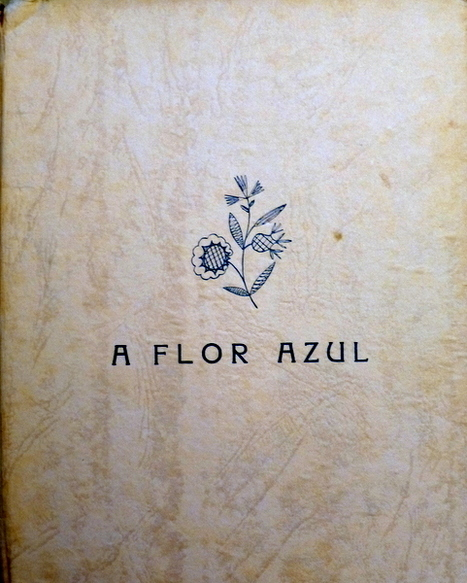 A Flor Azul de Ilse Losa | WEBFOLIO | Scoop.it