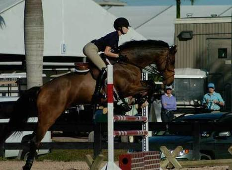 15 Riding Tips from George Morris | Practical Horseman Magazine | Eventing | Scoop.it