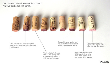 A Chemist Explains Why Corks Matter When Storing Wine | Cavissima - Actualité vin | Scoop.it