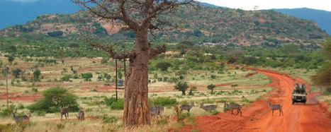 Viaggi 4x4 in Africa | ViaggiSudAfrica | Scoop.it