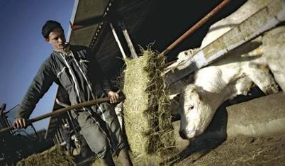 L'agrobusiness contre l'agriculture paysanne | Questions de développement ... | Scoop.it