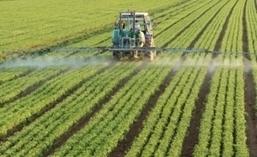 A quel point les pesticides sont-ils biodégradables ?   Sciences   Scoop.it