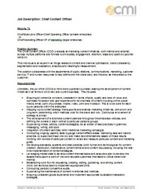 Chief content officer job description sample te - Insurance compliance officer job description ...