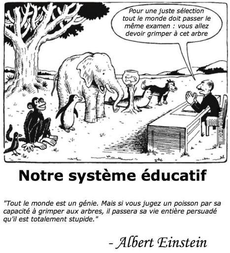 notre système éducatif | notre système educatif | Scoop.it