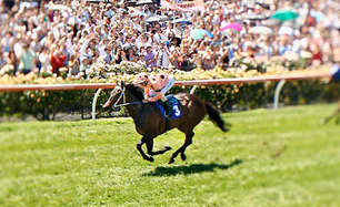 Black Caviar vise le 20/20 | Racing Post | Courses hippiques | Scoop.it