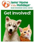Bunny's Blog: Iams Home 4 the Holidays Helps Nearly 1.3 Million Pets Find Forever Homes | Pet News | Scoop.it