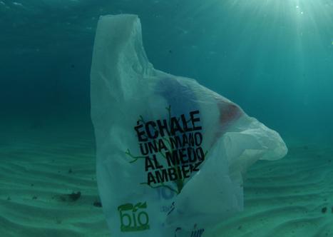 El principio del cambio. <br/> Los Viernes sin pl&aacute;stico. | consum sostenible | Scoop.it