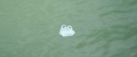Des sacs solubles dans l'eau | Tendances : consommation, alimentation ... | Scoop.it