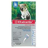 Pet Supplies: Dog & Cat Supplies and Pet Care Treatment - BestVetCare.com | Pet Care | Scoop.it