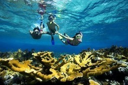 Snorkeling and Diving in Phuket | Things to do in Phuket | Things to do in Phuket | Scoop.it
