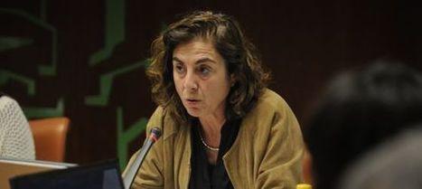 El euskera avanza en la administración pública | Idiomas, traducción e interpretación | Scoop.it