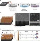 Specific rare cell capture using micro-patterned silicon nanowire platform | Micropatterns | Scoop.it