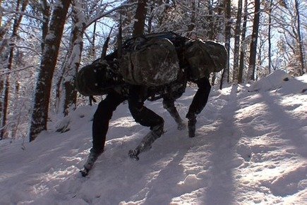 Google Buys Boston Dynamics, Creator Of Big Dog | TechCrunch | the web - ICT | Scoop.it
