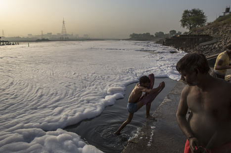 #TOXICbath Men bathe in an industrial waste-foam polluted section of the #YamunaRiver | Rescue our Ocean's & it's species from Man's Pollution! | Scoop.it