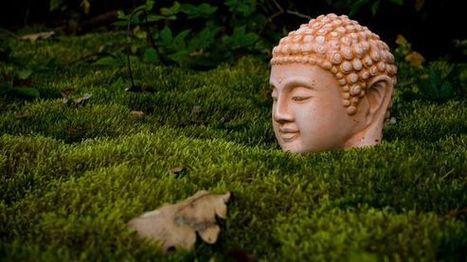 Gartenkultur: Ist der Buddha der neue Gartenzwerg? | urbanism and urban governance | Scoop.it