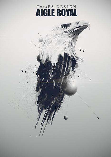 L'aigle Royal avec Adobe Photoshop [Tutoriel] | Time to Learn | Scoop.it