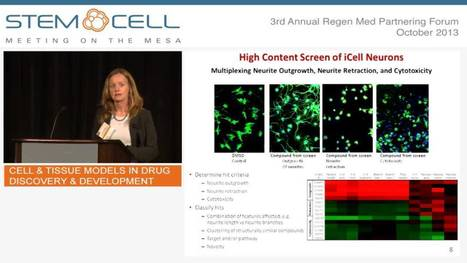 Cell & Tissue Models in Drug Discovery & Development - Case Presentation   Stem Cells & Tissue Engineering   Scoop.it