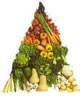 Food Processor | Juicers NZ | Scoop.it
