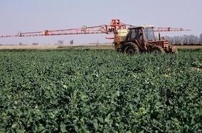 Pesticides: l'alerte des médecins du Limousin   Limousin   Scoop.it