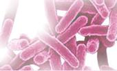 Una protezione contro le infezioni integrata nel sostituto osseo | Medical device | Scoop.it