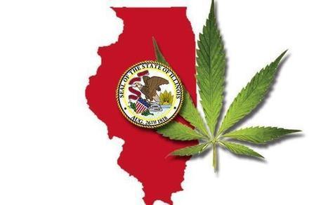 Illinois Becomes 20th State to Legalize Medical Marijuana   marijuanas   Scoop.it