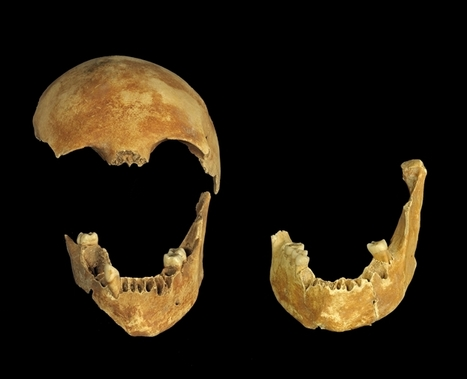 8,500-Year-Old Murder Mystery Uncovered : Discovery News | L'actu culturelle | Scoop.it