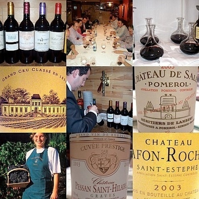 22/04/2013Wine critics say cheers to Bordeaux's new vintage - Expatica France | WINE WINE WINE | Scoop.it