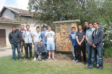 Nérac (47) : un hôtel à insectes pour abeilles sauvages   Dossier de presse LEGTA Nérac   Scoop.it