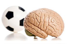 Cerveau et exercices physiques - Le sport à la portée de tous | Sport, corps et santé | Scoop.it