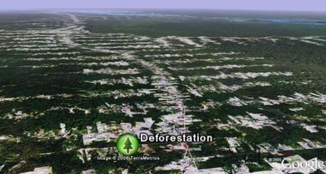 Google Earth ayuda a vigilar la deforestación e... | ECOSALUD | Scoop.it