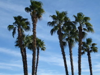The Palm Springs You Don't See | Gay Palm Springs | Scoop.it
