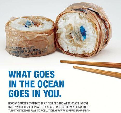 Ciò che finisce in mare, finisce anche dentro di te | Bio Eco Geo | SOS TERRA:solidando | Scoop.it