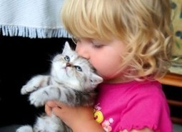 Pets and animals increase positive social behavior in Children with Autism. | | Animals R Us | Scoop.it