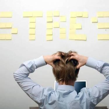 Com controlar les emocions a la feina | PRL, DIRECCIÓN y GESTIÓN | Scoop.it