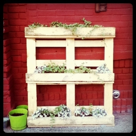 20 Creative Ways to Upcycle Pallets in your Garden | | Castofia | Scoop.it
